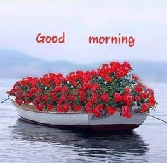 Morning Daleo have an awesome day 👍🏾 Good Morning Beautiful Pictures, Good Morning Images Flowers, Good Morning Sunshine, Good Morning Picture, Good Morning Good Night, Morning Pictures, Good Morning Wishes Friends, Good Morning Greetings, Good Morning Inspirational Quotes