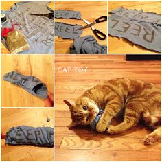 DIY Cat Toy with an Old T-shirt