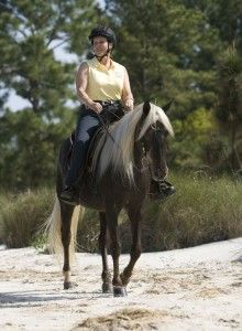 Gaited horse tips - how to select a gaited horse.
