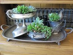Succulents in Old Silver ~ via Antiquechase blog.