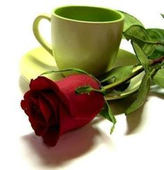 Love Messages, Good Morning Quotes, Coffee Cake, Morning Coffee, Hot Chocolate, Red Roses, Tea Cups, Mugs, Tableware