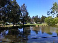 http://www.kangaroovalleytourist.asn.au/camping-caravans