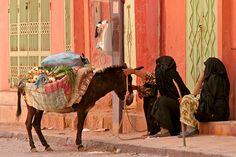 In Rissani en omstreken kom je deze traditioneel gekleed dames in zwarte kledij tegen. Ze zijn er moeilijk om vast te leggen maar van een afstandje kon ik met de grote lens nog wel een foto van ze maken. Bijzondere ervaring als je opeens deze mensen zi... - Zuid Sahara en oases, Marokko | Columbus Travel