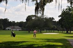There's a golf course running through it!  Winter Park Country Club is a 9 hole public golf course just off Park Avenue in Winter Park, Florida.
