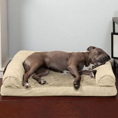 Archie & Oscar™ Archie Slide Aside Pet Crate & Reviews | Wayfair Couch Pet Bed, Pet Dogs, Dog Cat, Cool Dog Beds, Sofa Styling, Cat Colors, Grey Bedding, Traditional Sofa