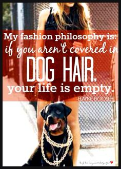 In the name of fashion and for the ❤ of our pets!