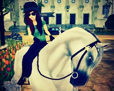 star stable edit