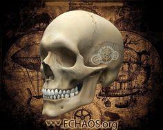 http://echaos.org/