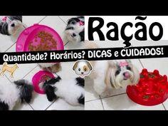 Alimentação Canina/Pet: Horários e Quantidade de Ração Para Filhotes, Ad...