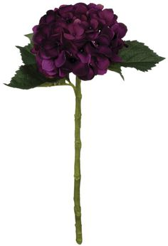 Purple Wedding Flowers House Of Hampton Hydrangea Flower Stem (Set of - Hydrangea Flower Stem (Set of Purple Wedding Flowers, Fake Flowers, Colorful Flowers, Silk Flowers, Wedding Bouquets, Eggplant Wedding Colors, Aubergine Wedding, Dark Purple Flowers, Eggplant Color