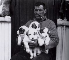 Tom Crean, an Irish Antarctic explorer has to be one of the most handsome and rugged men in history. And he loved puppies.