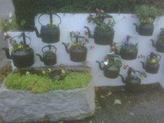"""""""Tea"""" and crumpets? Front Gardens, Outdoor Gardens, Container Plants, Container Gardening, Tea And Crumpets, Flea Market Gardening, My Secret Garden, Garden Inspiration, Garden Ideas"""