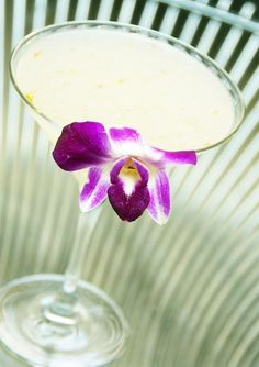 What a gorgeous cocktail from Toro Toro Restaurant in #Miami.
