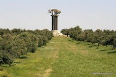 Ramat Rachel, The Olive Columns and the Park - Israel in Photos
