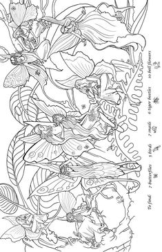 fairy search worksheet look find color by dover publications fairies and butterflies coloring box - Very Detailed Coloring Pages