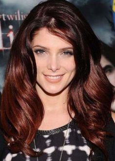 two toned hair colors for brunettes - Google Search