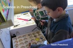 Science in the preschool classroom