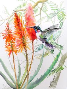 Hummingbird original large watercolor painting 24 by ORIGINALONLY, $195.00
