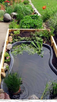 Raised bed with a pond