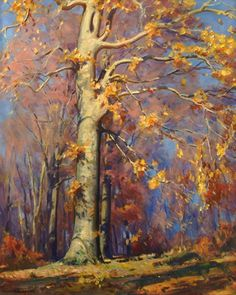 PAUL TURNER SARGENT Beech Trees in Landscape