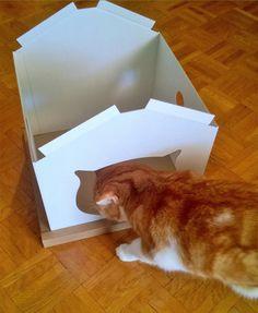 cabane chat blanche, en phase de montage sous l'oeil bienveillant de notre experte. Montage, Cabins