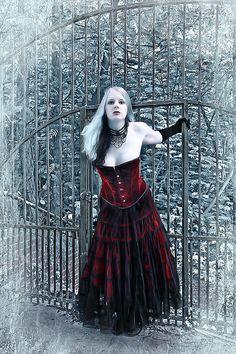 Nice gothic dress. Weird pose, though...