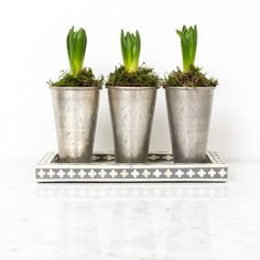 Buy the Lassi Brass Vase, Medium Silver in our India May Home Lassi Cups category £22.00 DPD Next Day Delivery