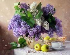 натюрморт цветы обои - Поиск в Google