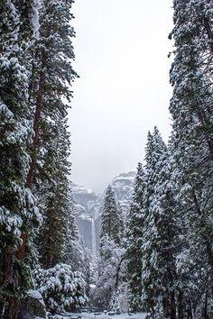 Bridalveil Falls, Yosemite in Winter