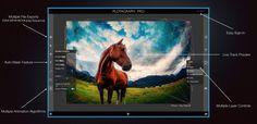 Plotagraph Pro es la forma más fácil de convertir fotos en GIFs