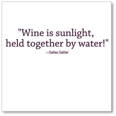 Wine is sunlight held together by water..