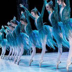Ballet Costumes, Dance Costumes, Alonzo King, Vaganova Ballet Academy, Ballet Dance Photography, Paris Opera Ballet, Ballet Performances, Dance Images, Image Nature
