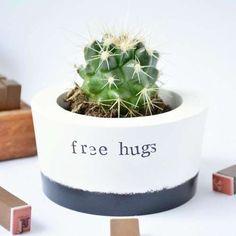 Free Hugs Little Pot Cactus - Handmade Pot & Cactus Stocking Filler UK Rock Plants, Air Plants, Cactus Plants, House Plants, Cacti, Indoor Plants, Cactus Pun, Brown Glass Bottles, Glass Cactus
