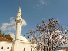 Koppers's Travel Blog: Bodrum, Turkey - April 20, 2010