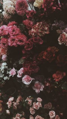 'Dark Floral Palette ' Photographic Print by Kayla Richard Tumblr Wallpaper, Wallpaper Backgrounds, Iphone Wallpaper, Flower Aesthetic, Motif Floral, Flower Wallpaper, Cute Wallpapers, Aesthetic Wallpapers, Beautiful Flowers