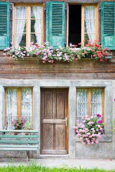 Pastel Candy Windows