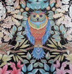 Youngok's Happy Arts: Coloring Book : Secret Garden #4 - Owl in fall night  #coloringbookforadults #coloringbook #colortheory #secretgarden #johannabasford #secretforest #secretforestocean #비밀의정원 #컬러링북