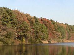 Hoffler Creek