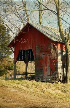 Red barn growing old, North Carolina by Elizabeth Golden