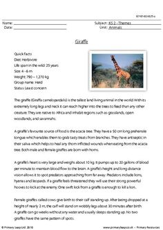 giraffe worksheet | Polar bear comprehension