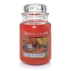 Autumn in the Park™ : Large Jar Candles : Yankee Candle  No throw, faint scent. Smells great, but it's barely there.