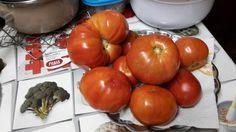 Tomaten van buren