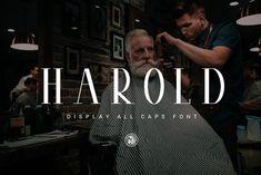 Harold by Webvilla on @creativemarket