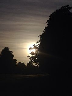 Sun flare at Dusk in the Phoenix Park, Dublin, Ireland by Joanna Campbell Griffin, via Flickr Canon 1000d, Sun Flare, Dublin Ireland, Dusk, Phoenix, My Photos, Journey, Sunset, Pictures