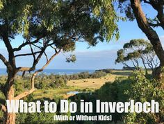 What to Do in Inverloch With (or Without) Kids