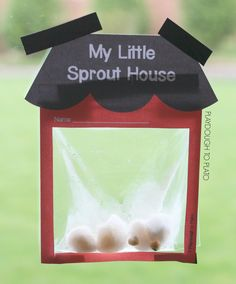 Grow seeds in a homemade little sprout house greenhouse. Such a cute science experiment for preschool, kindergarten Kid Science, Cool Science Experiments, Science Kits, Science Projects, Science Lessons, Kindergarten Science Experiments, Science Centers, Playdough To Plato, Spring Activities