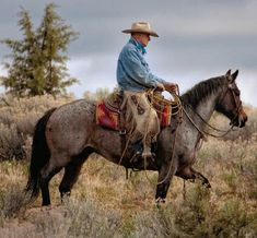 🐎Working cow horse Cutting western quarter paint horse appaloosa equine tack cowboy cowgirl rodeo ranch show ponypleasure barrel racing pole bending saddle bronc gymkhana All The Pretty Horses, Beautiful Horses, Animals Beautiful, Cowboy Pictures, Horse Pictures, Cowgirl And Horse, Horse Love, Paint Horse, Appaloosa
