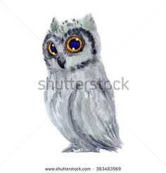 Owl bird watercolor painting hand made isolated on white background