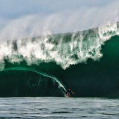#Surf Surf City, Sport, Serenity, Skate, Surfing, Aqua, Coast, Waves, Ocean
