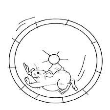 hamster coloring pages google search